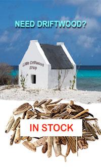 Little Driftwood Shop